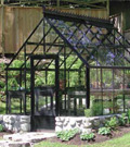Most Popular Greenhouses